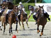 filename-ascona-polo