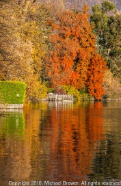 Reflection-of-a-red-tree-in-the-Lago-Maggiore-in-Ticino-Switzerland